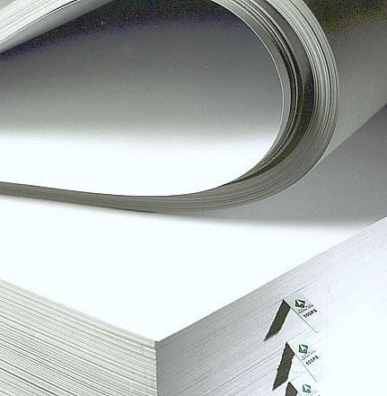 giấy Duplex nhập khẩu tại trung quốc