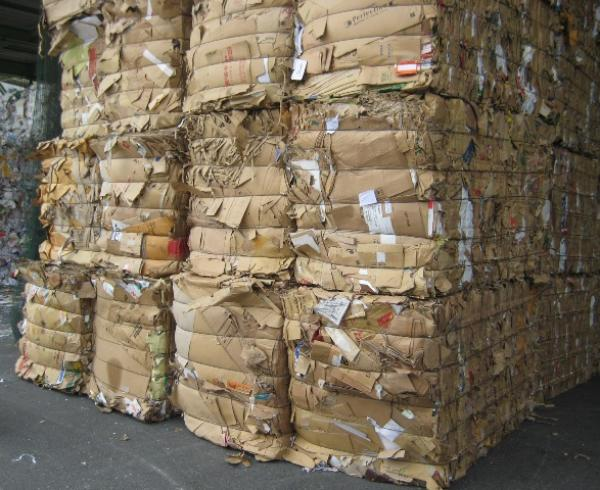 thu mua phế liệu giấy Corton