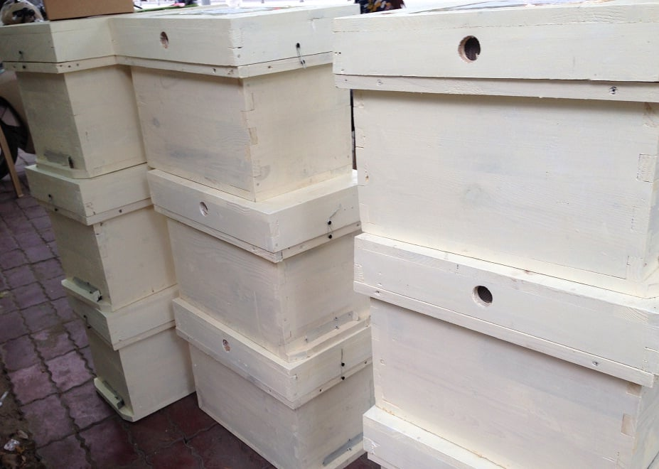 chuồng nuôi ong nhập khẩu tại Trung Quốc