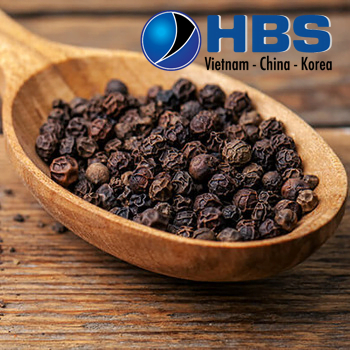 VIETNAM-HIGH-QUALITY-BEST-PRICE-ORGANIC-DRIED