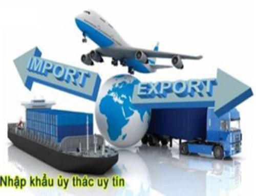 What is trust services export ?